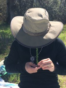 Christine braiding a beautiful ponderosa pine needles necklace